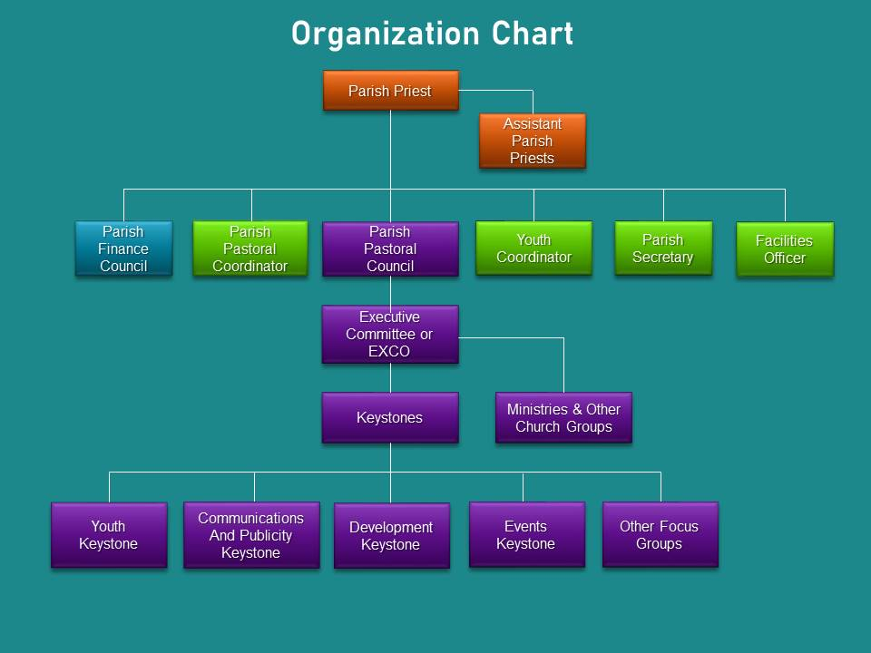 Church of St Anthony Organisation Chart